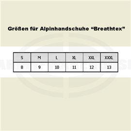 Bundesheer Alpinhandschuhe, Breathtex, schwarz